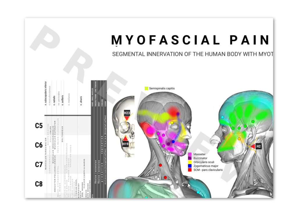 physioposters